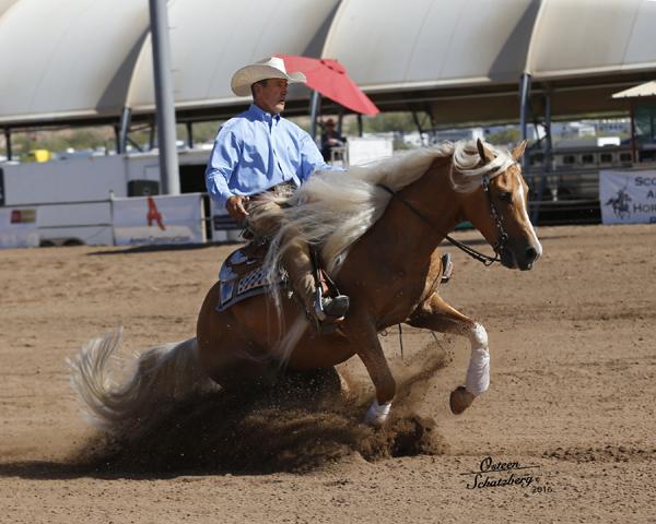Scottsdale - western