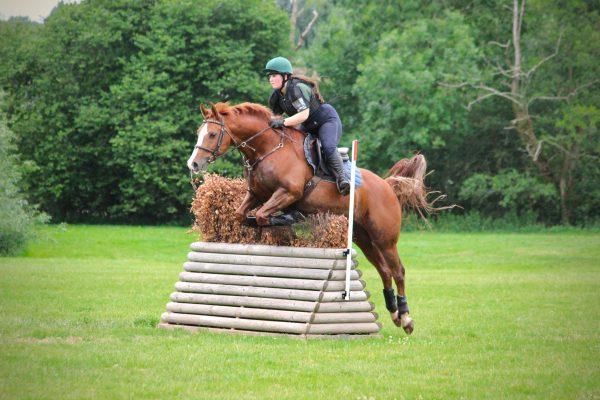 Avonbrook Odin jumping at Lincomb XC (c) JHemming Photography