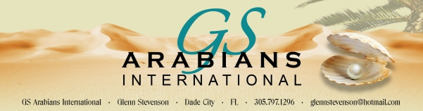 GS Arabians International