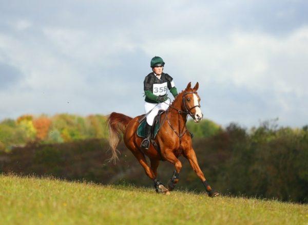 Avonbrook Odin flying around the course at Calmsden (c) Spidge Photography