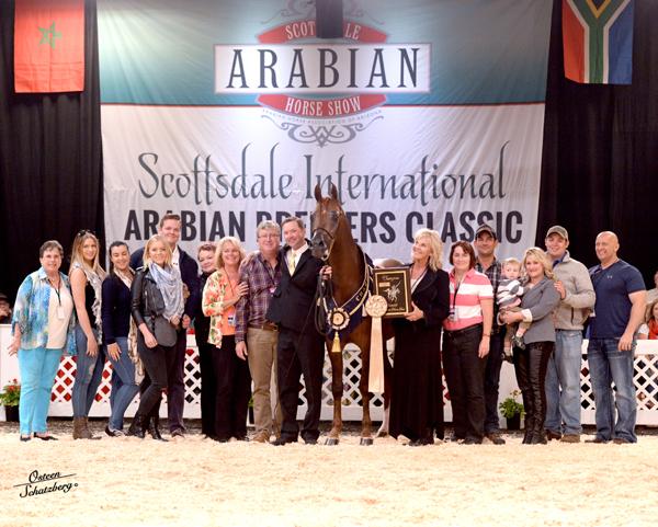 Scottdale - Champion