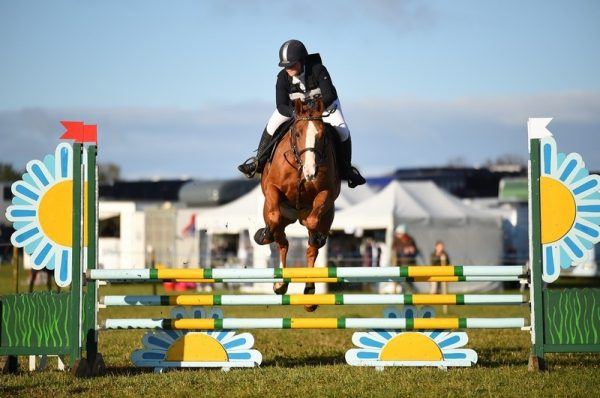 Avonbrook Odin posting another showjumping clear round, here at Calmsden (c) Spidge Photography