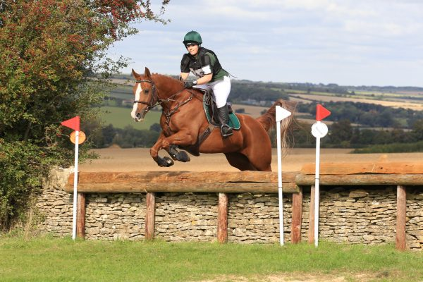 Avonbrook Odin jumping double clear in the BE90 (C) Jasmine Punter Photography