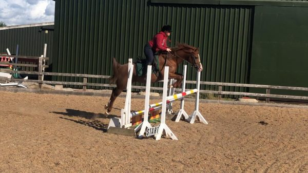 Marcus Aurelius making light work of a 105cm triple bar (c) Jasmine Hemming