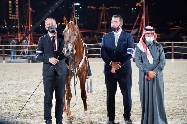 Hader Al Shaqab