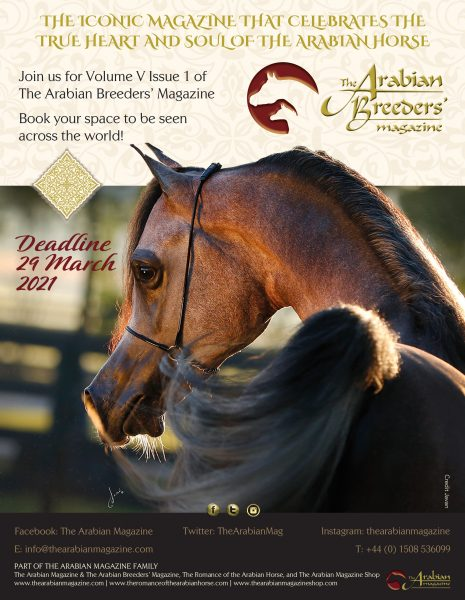 deadline poster for The Arabian Breeders' Magazine Volume V Issue I