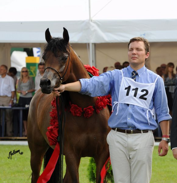 Jan Trela showing Pinga to Best in Show in Poland