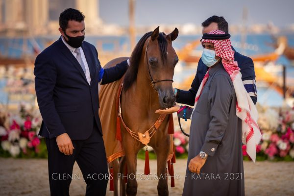 Rafeef Al Shaqab