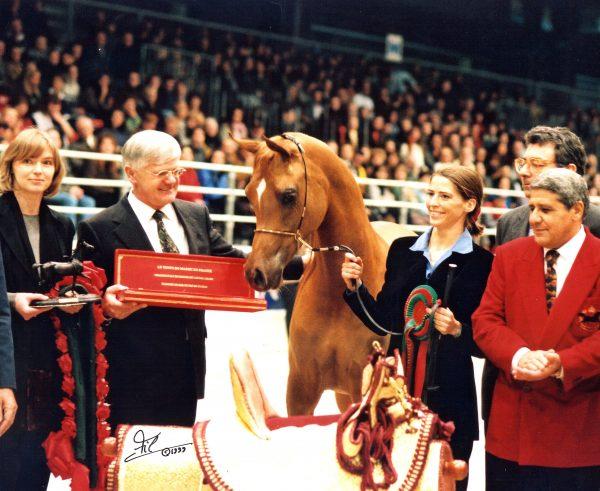 Essteema - Triple Crown winner