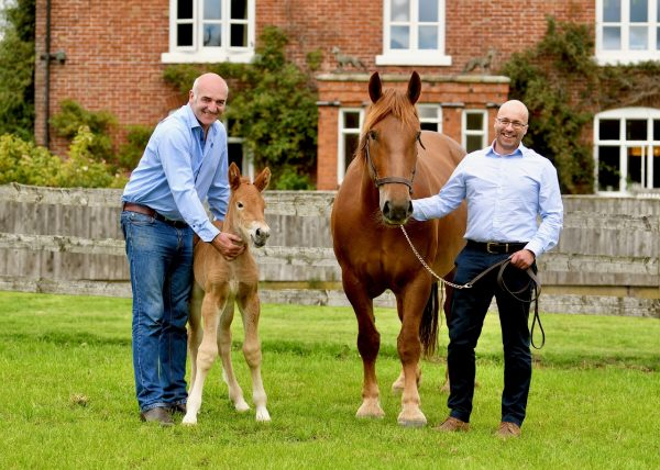 Tullis Matson with the foal and Dr Gareth Starbuck with the mare Ruby