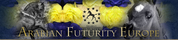 Arabian Futurity Europe