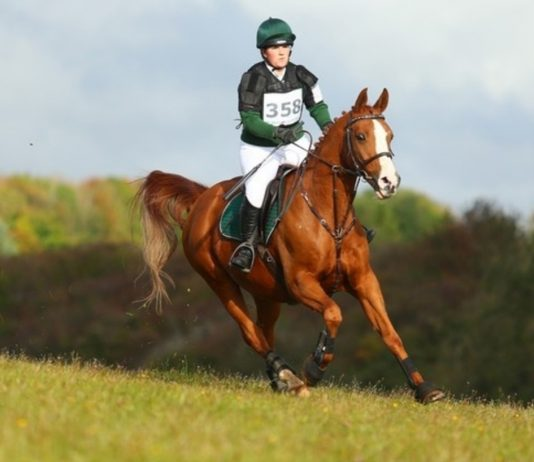 Avonbrook Odin flying around the course at Calmsden (c) Spidge Photography