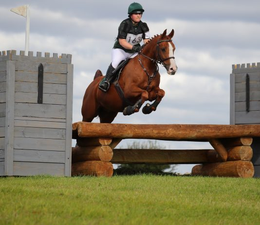 Avonbrook Odin jumping double clear at Ascott-Under-Wychwood (c) Jasmine Punter Photography
